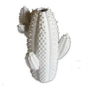 Cactusvaas1