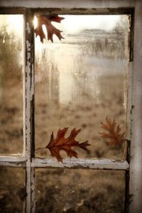 Herfst Window