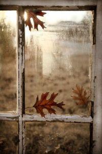 Herfst Window