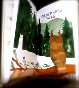 Owls Onwijs leuk boek!