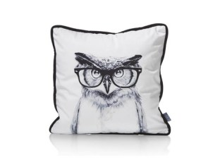 owl-glasses
